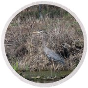 Round Beach Towel featuring the photograph Blue Heron Stalking Dinner by David Bearden