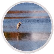 Blue Heron Standing In A Pond At Sunset Round Beach Towel