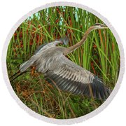 Blue Heron Take-off Round Beach Towel
