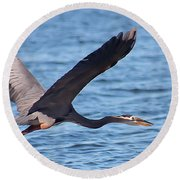Blue Heron Wingspan Round Beach Towel
