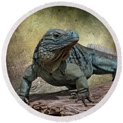 Blue Iguana Round Beach Towel