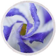 Round Beach Towel featuring the photograph Blue Inspiration. Lisianthus Flower Macro by Jenny Rainbow