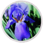 Blue Iris 2 Round Beach Towel