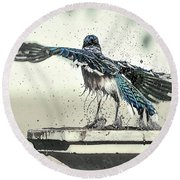 Blue Jay Bath Time Round Beach Towel