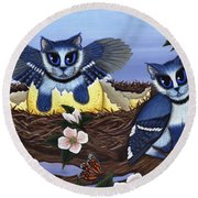 Blue Jay Kittens Round Beach Towel