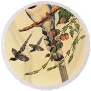 Blue Magpie, Urocissa Magnirostris Round Beach Towel