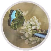 Blue Morpho In Spring Round Beach Towel by Janette Boyd