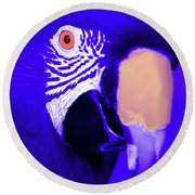 Blue Parrot  Round Beach Towel