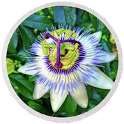 Blue Passion Flower Round Beach Towel by Sue Melvin