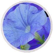Blue Petunia Blossom Round Beach Towel
