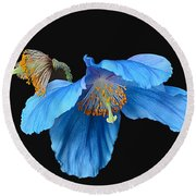 Blue Poppies Round Beach Towel