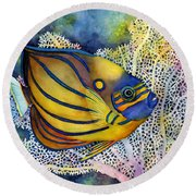 Blue Ring Angelfish Round Beach Towel