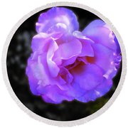 Round Beach Towel featuring the photograph Blue Rose by Mark Blauhoefer
