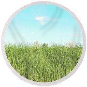 Round Beach Towel featuring the photograph Blue Sky Over Green Grass by Cindy Garber Iverson