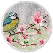 Blue Tit Bird On Cherry Blossom Tree Round Beach Towel