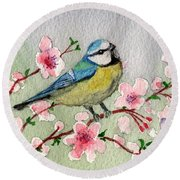 Blue Tit Bird On Cherry Blossom Tree Round Beach Towel
