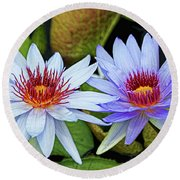 Round Beach Towel featuring the photograph Blue Water Lilies by Judy Vincent