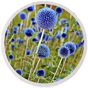 Blue Wild Thistle Round Beach Towel