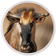 Blue Wildebeest Portrait Round Beach Towel