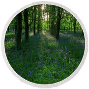 Bluebells In Oxey Woods Round Beach Towel