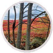 Blueberry Field Through The Wall - Cropped Round Beach Towel