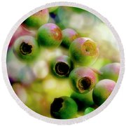 Blueberry On The Vine Round Beach Towel