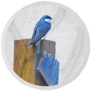 Round Beach Towel featuring the photograph Bluebird by James BO Insogna