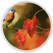 Bluebird Of Autumn Round Beach Towel