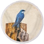 Round Beach Towel featuring the photograph Bluebird Post by James BO Insogna
