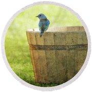 Bluebird Resting On Bucket, Textured Round Beach Towel