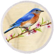 Bluebird's Spring Round Beach Towel