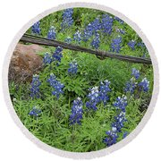 Bluebonnets And Wire Round Beach Towel