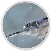 Winter Bluejay Round Beach Towel