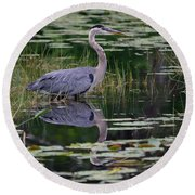 Blue's Image- Great Blue Heron Round Beach Towel