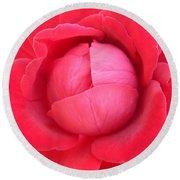 Blush Lettuce Rose Round Beach Towel