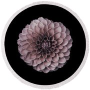 Blushing Dahlia  Round Beach Towel