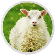 Bo Peep's Sheep Round Beach Towel