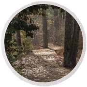 Boardwalk Through The Woods Round Beach Towel