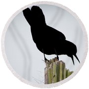 Boat-tailed Grackle Silhuoette Round Beach Towel