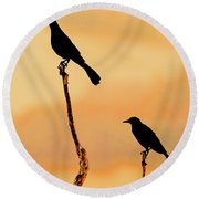 Boat Tailed Grackles Round Beach Towel