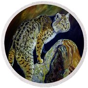 Bobcat At Sunset Original Oil Painting 16x20x1 Inch On Gallery Canvas Round Beach Towel by Manuel Lopez