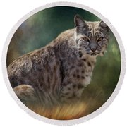 Bobcat Gaze Round Beach Towel