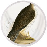 Bonelli's Eagle Round Beach Towel