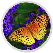 Boothbay Butterfly Round Beach Towel