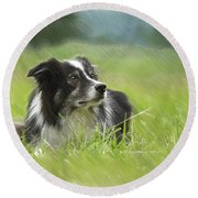Border Collie - Dwp2189332 Round Beach Towel