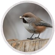Boreal Chickadee Round Beach Towel