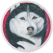 Round Beach Towel featuring the drawing Boris The Siberian Husky by Ania M Milo