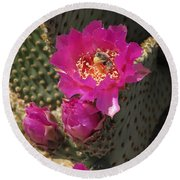 Borrego Springs Bloom 6 Round Beach Towel