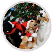 Borzoi Hounds Dressed As Father Christmas Round Beach Towel by Christian Lagereek