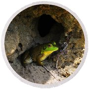 Round Beach Towel featuring the photograph Boss Frog by Al Powell Photography USA